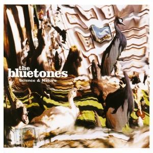 Bluetones_2000_Album