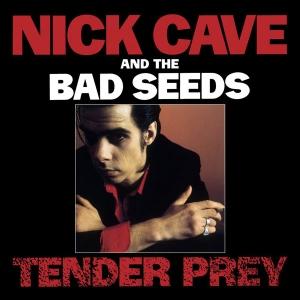 CaveNick_1988_Album